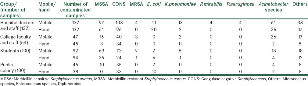 Table 1: Distribution of various bacterial isolates among different groups