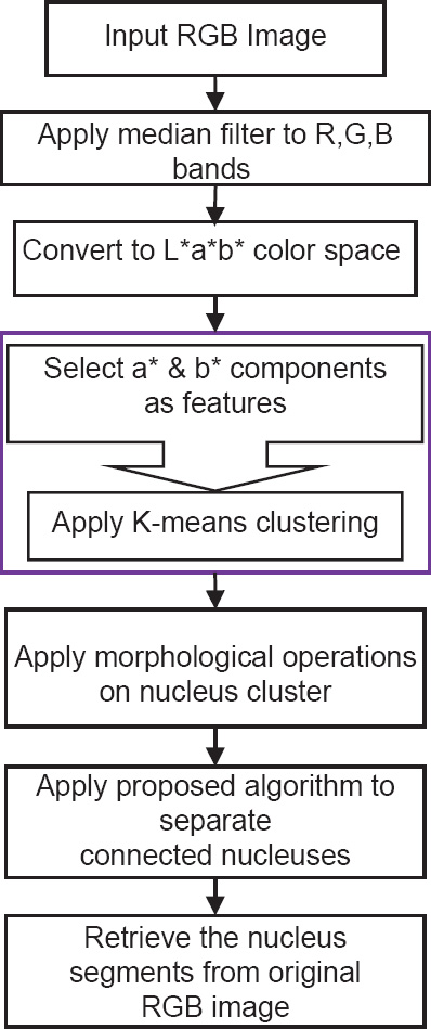 Nucleus and cytoplasm segmentation in microscopic images