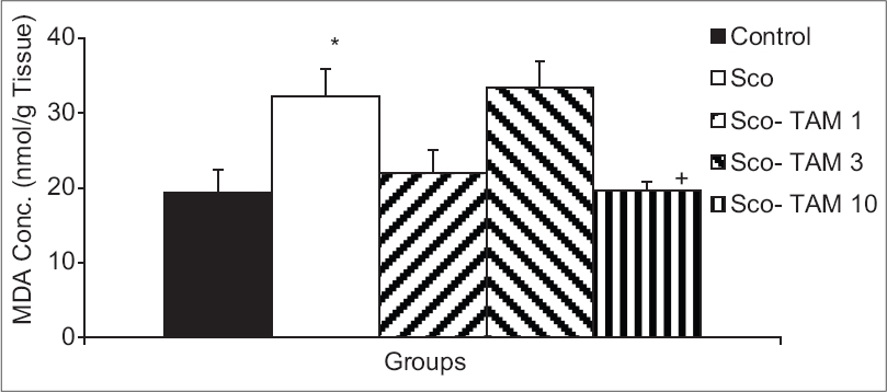 Figure 7: Comparison of the malondialdehyde concentrations in cortical tissues of five groups. Data are presented as mean ± standard error of the mean (<i>n</i> = 10 in each group). *<i>P</i> < 0.05 compared to control group. <sup>+</sup><i>P</i> < 0.05 compared to Sco-group