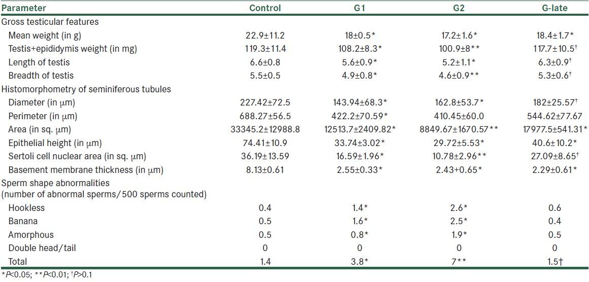 Histomorphometric Effects Of Gemcitabine On Swiss Albino Mice