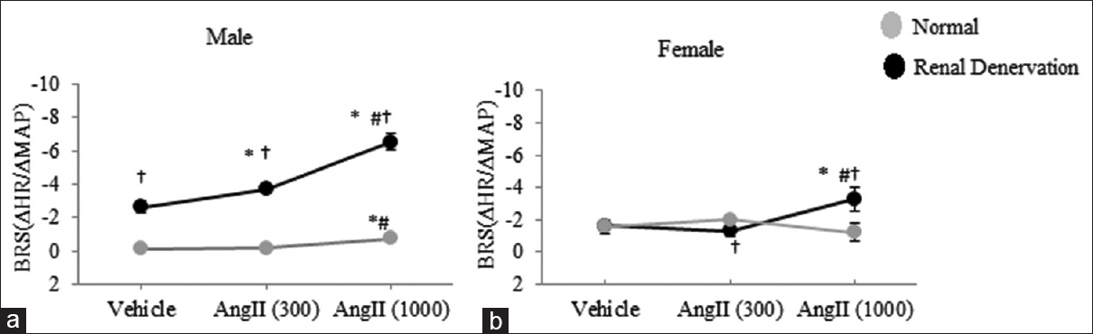 Figure 1: Data for baroreceptor reflex sensitivity in intact and renal denervation male (a) and female (b) rats in the groups treated with vehicle or two different doses of angiotensin II infusion. Ang II (300) and Ang II (1000) represent angiotensin II (30 ng/kg. min) and angiotensin II (1000 ng/kg/min). Statistical analysis was obtained by one-way ANOVA using Tukey as <i>post hoc</i>. The symbols represent significant difference from &#42; vehicle, # Ang II (300), or &#8224;renal denervation (<i>P</i> &#60; 0.05)