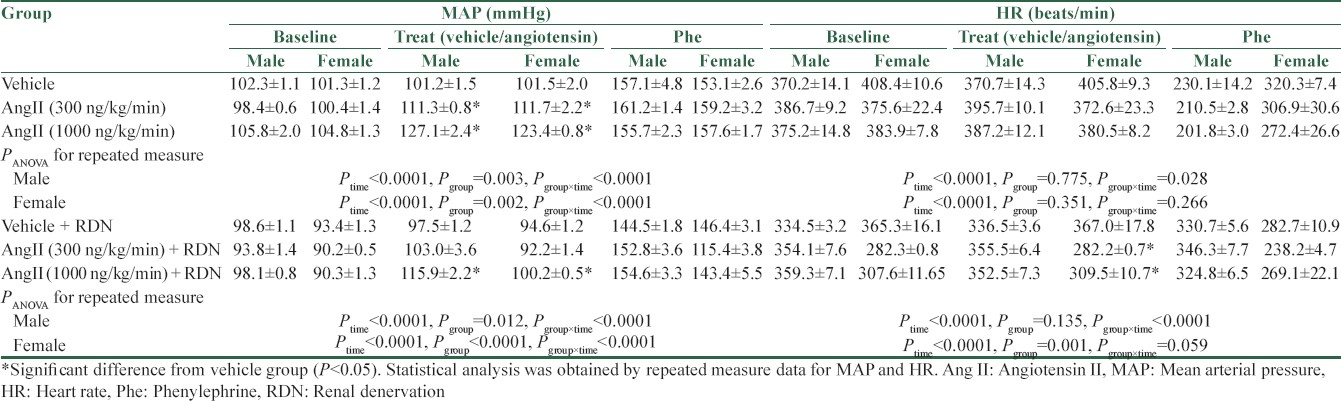Table 1: The data for mean arterial pressure and heart rate at baseline, vehicle or angiotensin II infusion (treat) and phenylephrine infusion in male and female rats in experimental groups