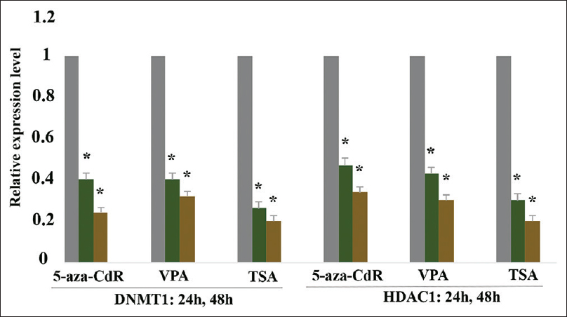 Figure 2: Relative expression level of DNA methyltransferase 1 and histone deacetylase 1 in the experimental groups treated with 5-Aza-2'-deoxycytidine (2.5 μM), valproic acid (5 μM), and trichostatin A (1.5 μM) versus control groups at 24 and 48 h. The  first column of each group belongs to untreated cells (control group), and the others belong to treated cells with the compounds with the mentioned concentrations at 24 and 48 h. Asterisks (*) indicate significant differences between 5-Aza-2'-deoxycytidine, valproic acid and trichostatin A treated and the control groups