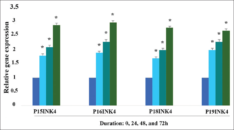 Figure 4: The relative expression level of p15INK4, p16INK4, p18INK4, and p19INK4 treated with 5-Aza-CdR in PLC/PRF/5 cells. A significant expression of all of the genes was observed after treatment with this compound at different times (24, 48, and 72 h). Asterisks (*) indicate significant differences between treated and control groups. Data are presented as the means ± standard errors of the mean